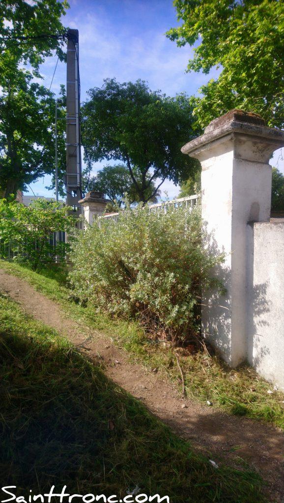 Les belles demeures du XIX ème – Sainte Émilie les Tilleuls